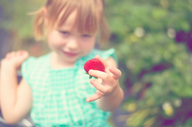 Strawberry_0005